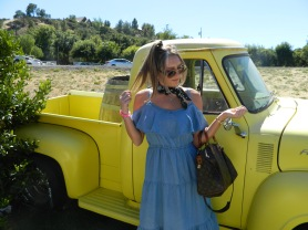 This vintage yellow truck was so cute!